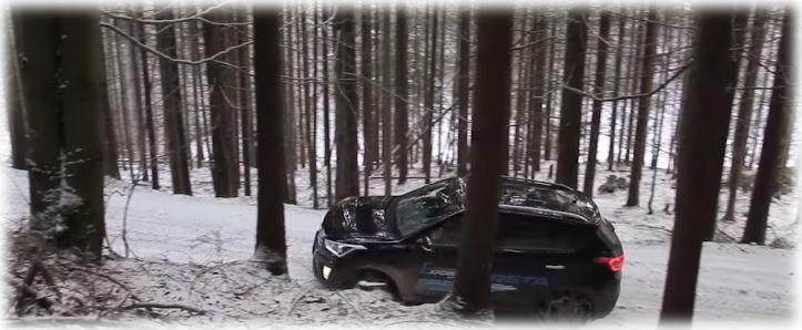 Авто на лесной дороге